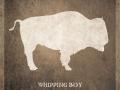 buffalo_fb-upload