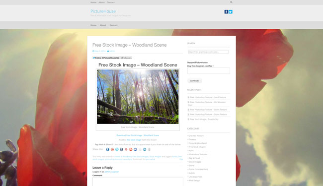 Posts Page For PictureHouse.