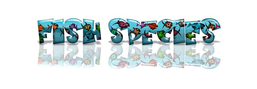 Fish Species Banner